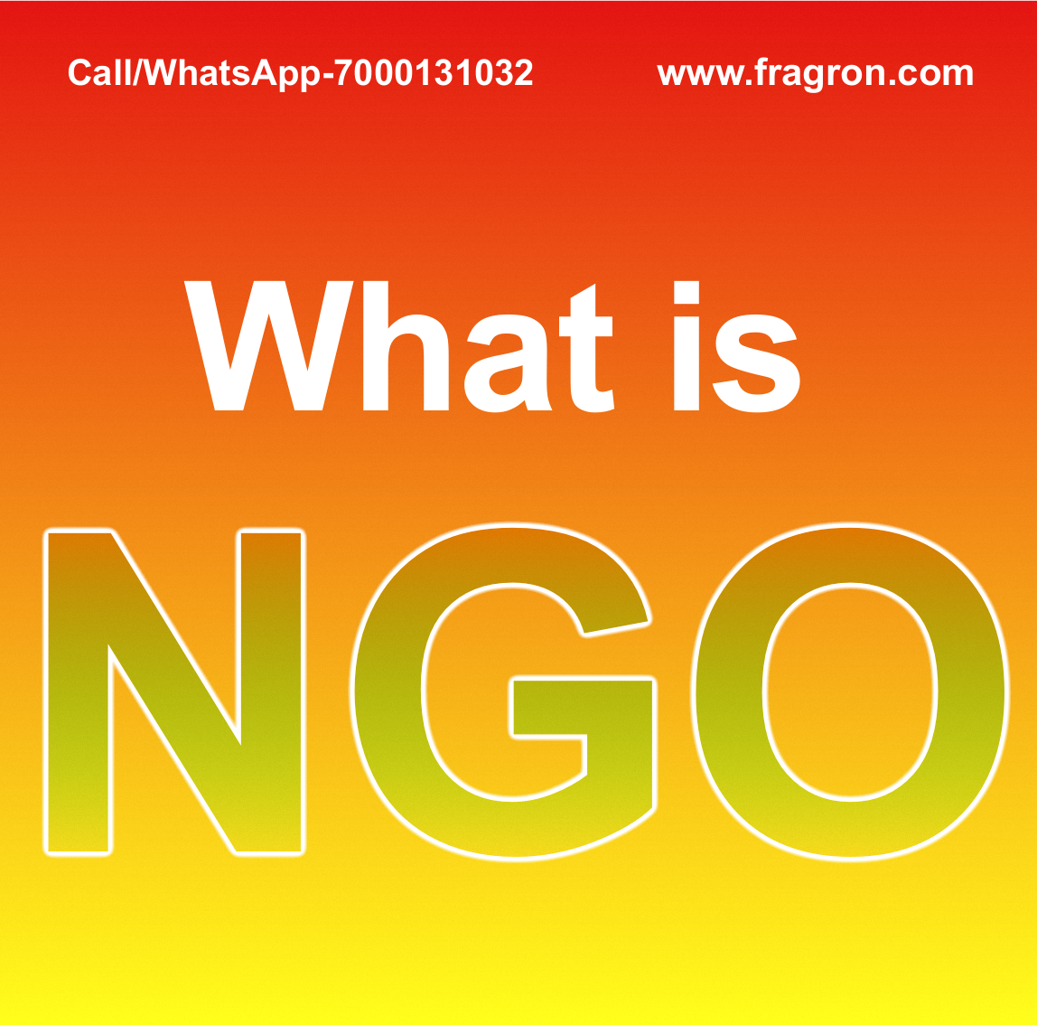 What is NGO ?
